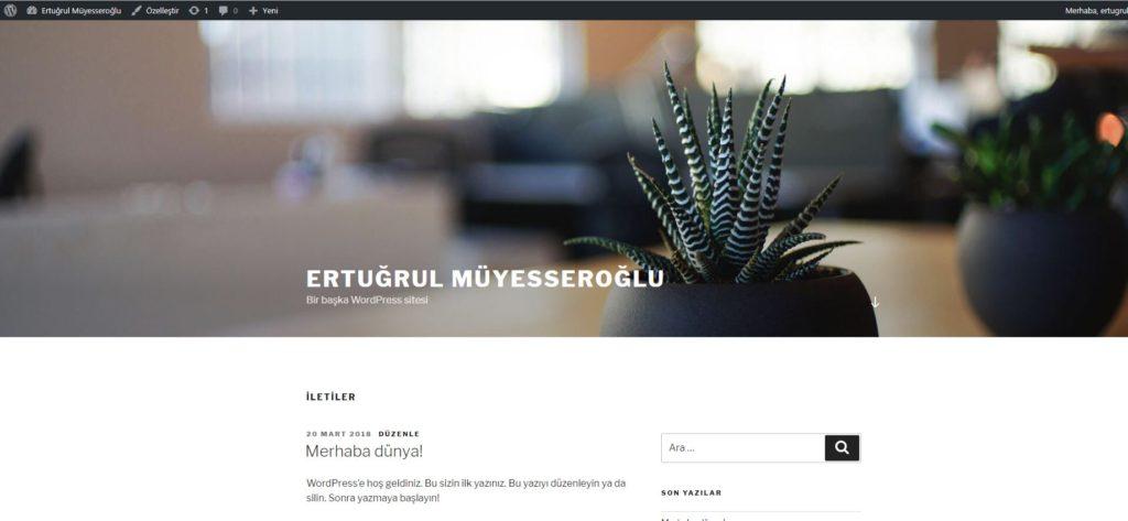 Wordpress web sayfasi