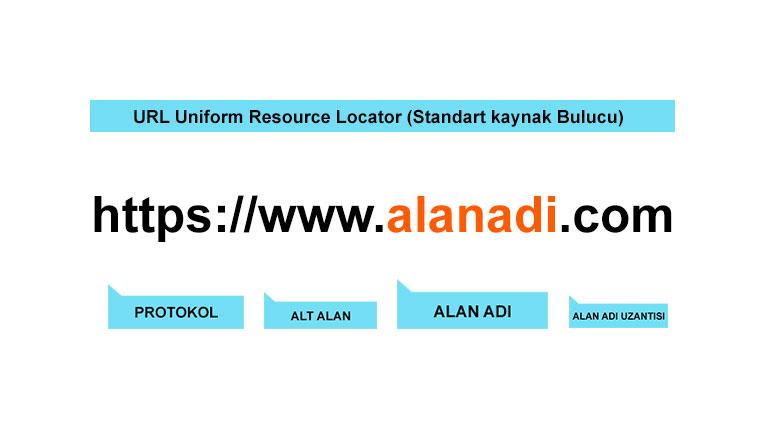 URL Domain Alan Adı Nedir?