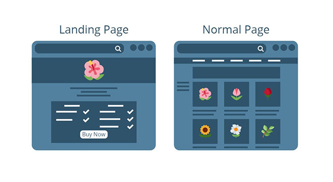Landing Page Sayfası