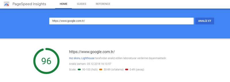PageSpeed Insights Hız Testi
